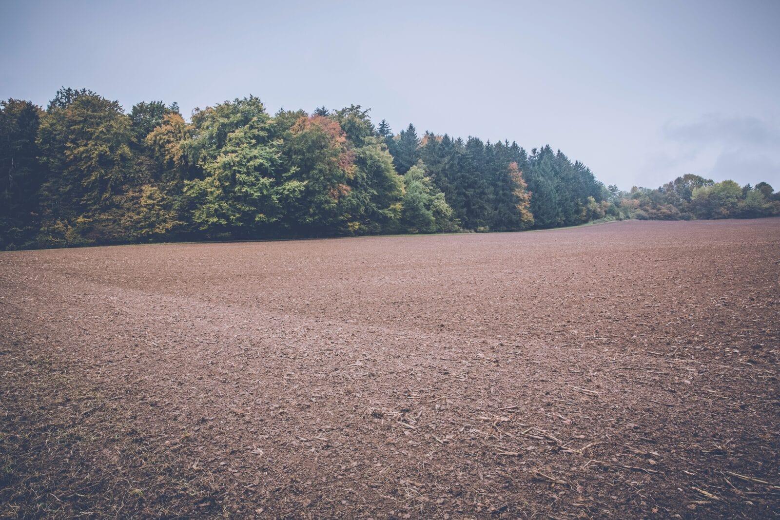 רכישת קרקע